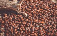 Milano Coffee Festival caffè
