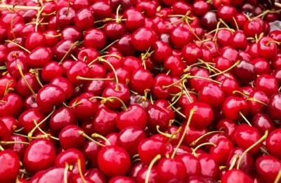 ciliegie e amarene