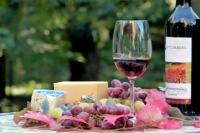 vino e formaggio abbinamento