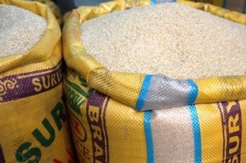 riso biologico italiano