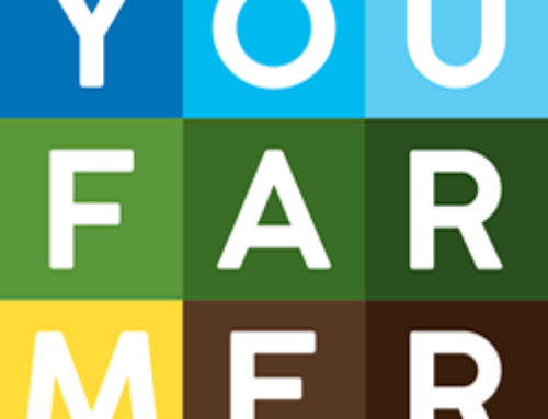 Con YouFarmer si può adottare un orto e imparare a coltivarlo