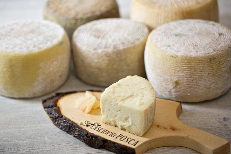 Un team italo-egiziano ha scoperto il formaggio più antico al mondo 1