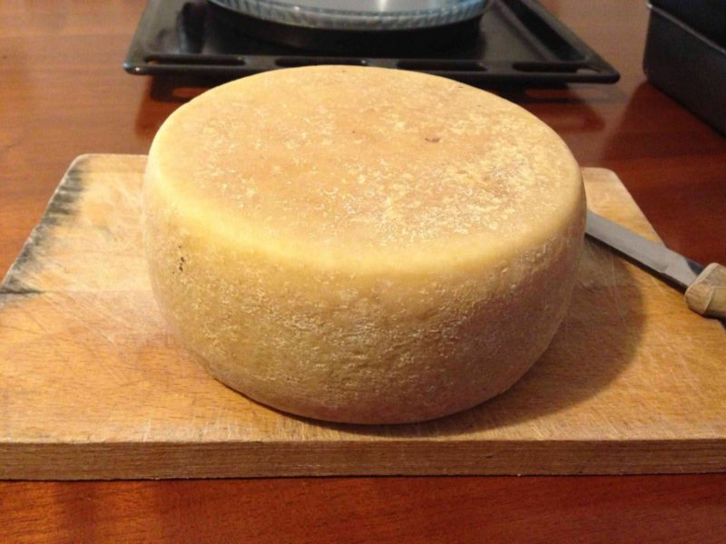 Un team italo-egiziano ha scoperto il formaggio più antico al mondo 3