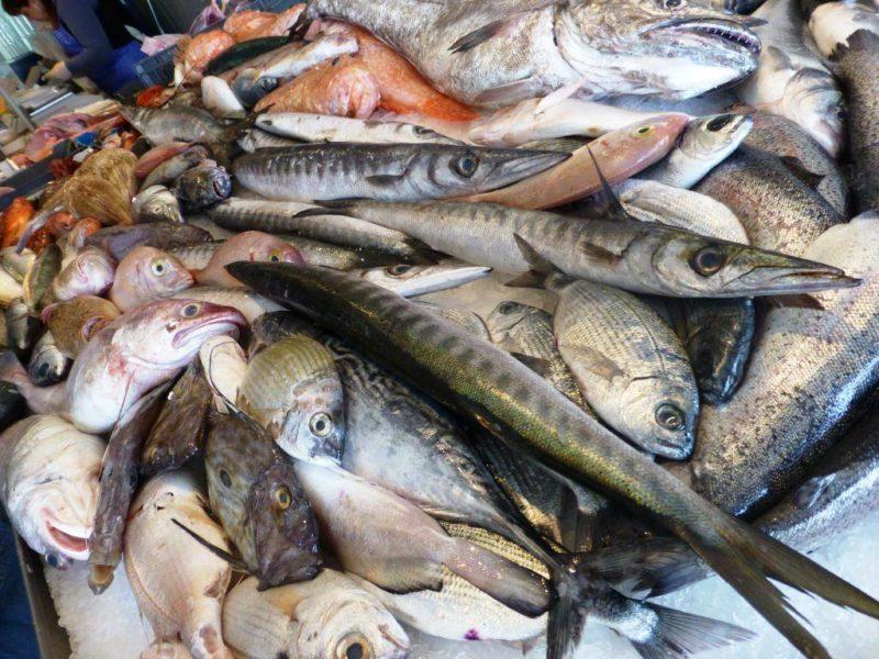 Basta bugie ma maggior chiarezza nel menu di pesce 3