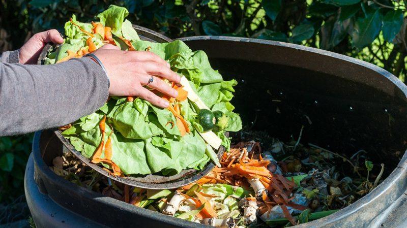 Contro lo spreco alimentare nasce il progetto Cibox 1