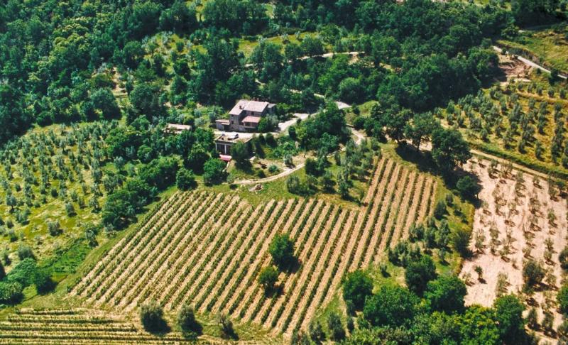 Sempre più giovani italiani si dedicano all'agricoltura 1