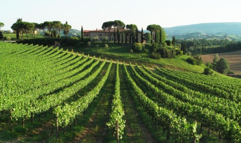 Con Italia Delight puoi vivereesperienze autentiche 2