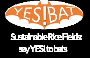 YES!BAT Logo