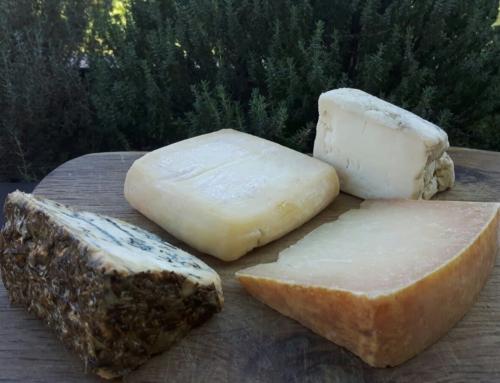 I formaggi artigianali dei piccoli produttori del Lazio