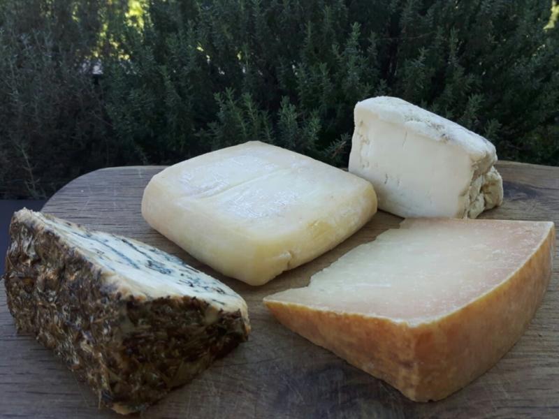 Degusto Formaggi Piccoli Produttori del Lazio