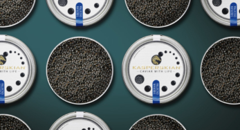 Kasperskian Caviar With Life