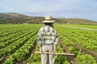 Italiani Figlio Agricoltore