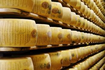 Parmigiano Reggiano Forme