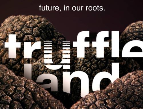 Il futuro della tartuficoltura è al sicuro con Truffleland