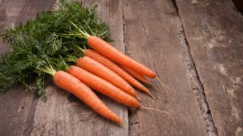 fibre carote vista cucina