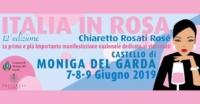 italia in rosa 2019 locandina