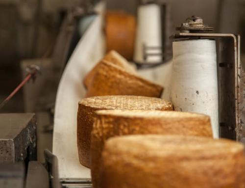 Formaggi Argiolas: formaggi che profumano di Sardegna