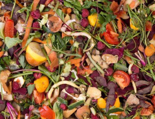 BitGood, la piattaforma digitale di Confesercenti contro lo spreco alimentare