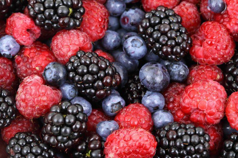 Presto si potrà raccogliere frutta gratuitamente a Copenaghen