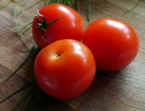 Firmato l'accordo salva pomodoro Made in Italy