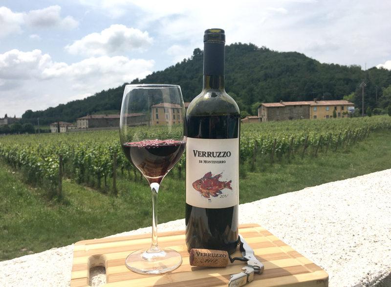 Monteverro, un vino toscano con carattere internazionale