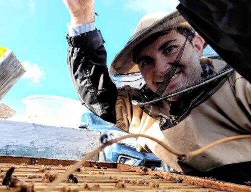I sapori contrastanti della Puglia nel miele La Pecheronza