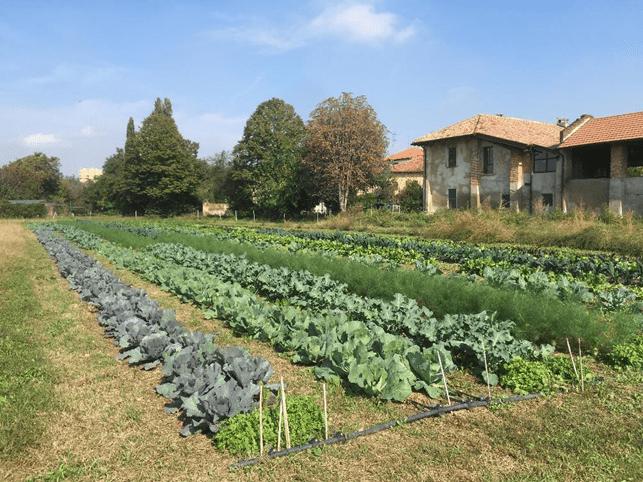 Relex a fianco di Cascina Linterno e dei milanesi, nel crowdfunding ecologico promosso da NaturaSì
