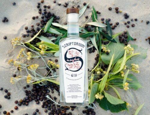 Scriptorium gin, il sapore delle Marche in una bottiglia
