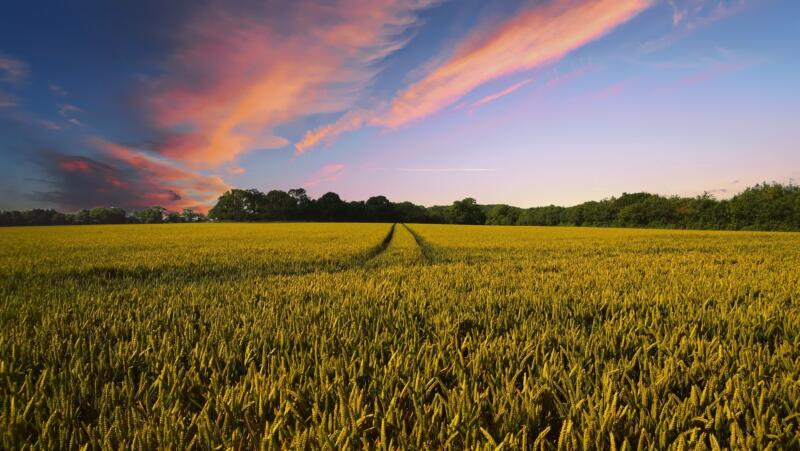 geoFootprint agricoltura