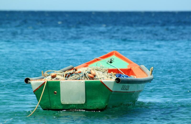 Pesce italiano in calo con le uscite in mare ridotte 1