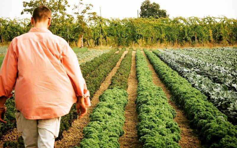 Riscoprire la fiducia attraverso il cibo, intervista a Cà di Viazadùr Farmhouse 1