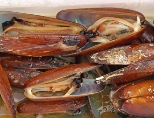 Dai ghiri ai datteri di mare, i piatti proibiti che danneggiano l'ambiente