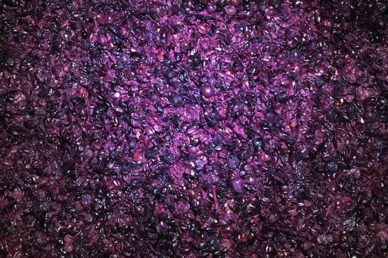 vinacce