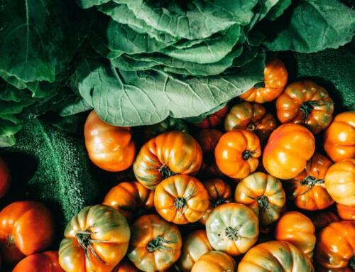 Potenzialità e traiettorie di sviluppo dell'agricoltura italiana