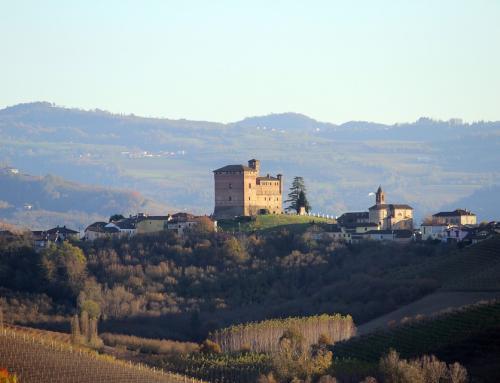 Il Piemonte del vino ricomincia da Piemonte Land of Wine