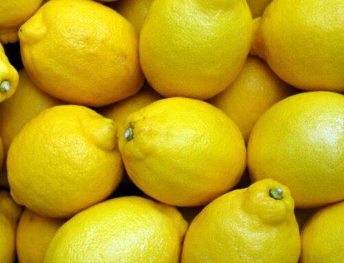 Gli scarti del limone come integratori contro il rischio cardio-vascolare