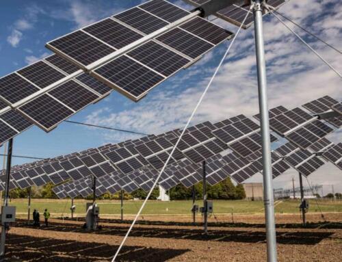 ENEA, ETA e la prima rete nazionale per l'agrivoltaico sostenibile